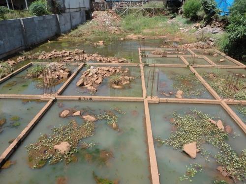 Terreno com água parada preocupa moradores