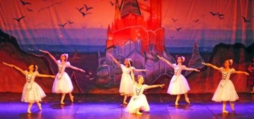 10c1fd75d9 Cerca de 300  alunos-bailarinos  estão envolvidos nas apresentações