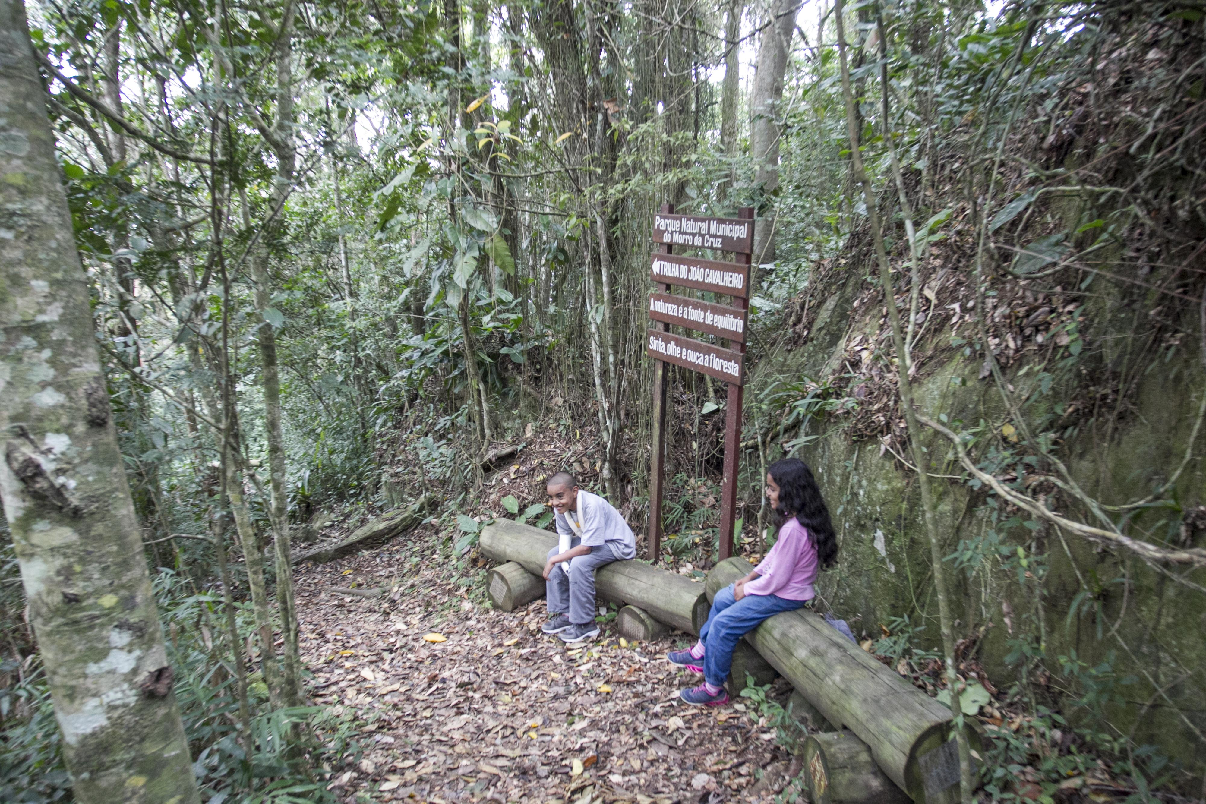 Parque Natural Municipal do Morro da Cruz conta com trilhas em meio ao verde – Foto: Marco Santiago