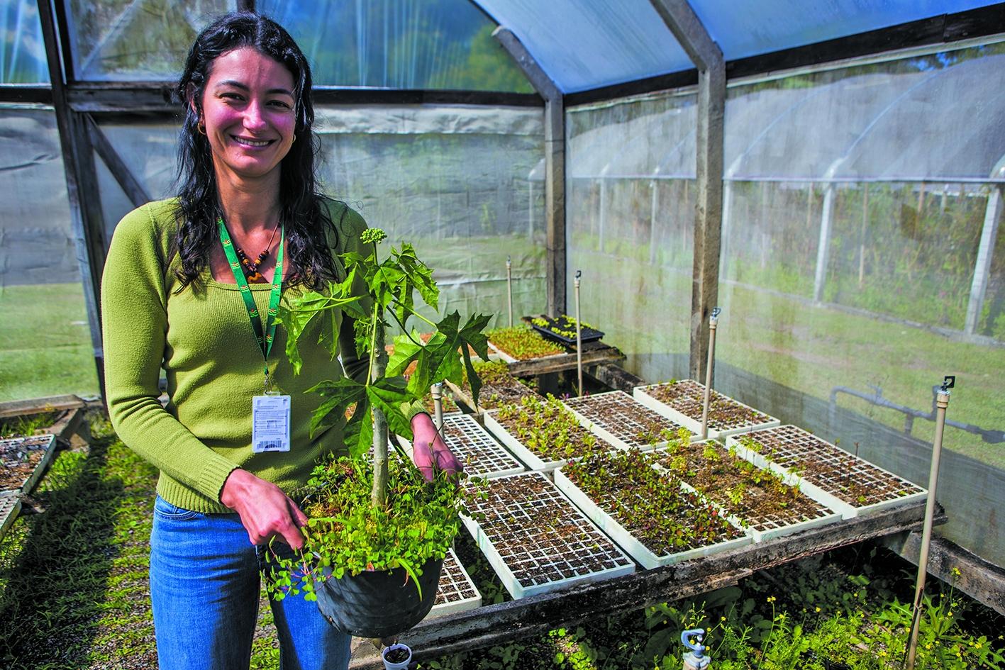 A nutricionista Cristina Ramos Callegari, da Epagri, ressalta o valor nutricional das Pancs - Flávio Tin/ND