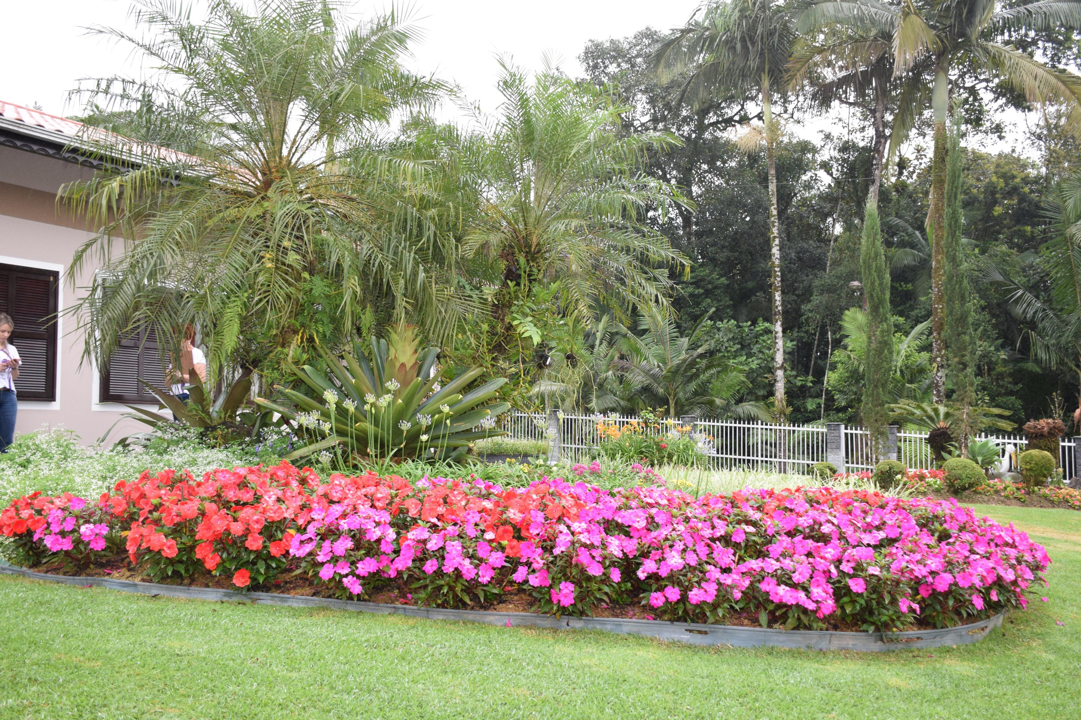 Jardim vencedor na categoria Exuberância em Flores - Divulgação/ND