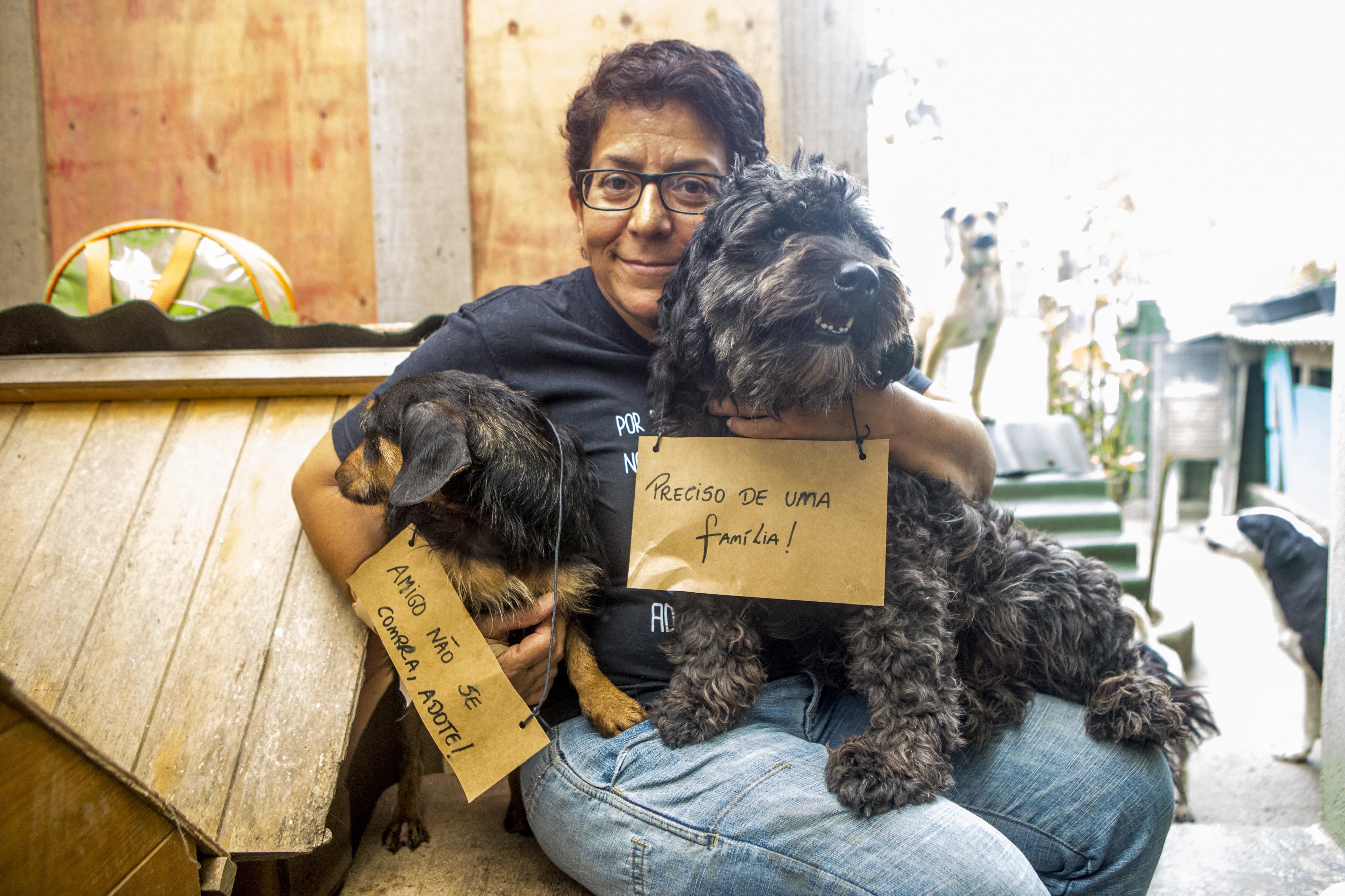 Rosa Villanueva dedica seu tempo, afeto e dinheiro aos bichos - Flávio Tin/ND