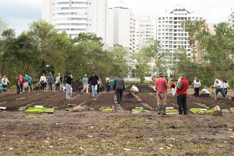 A horta medicinal será feita em formato de mandala, com 12 canteiros - Francine Bagnati/Divulgação