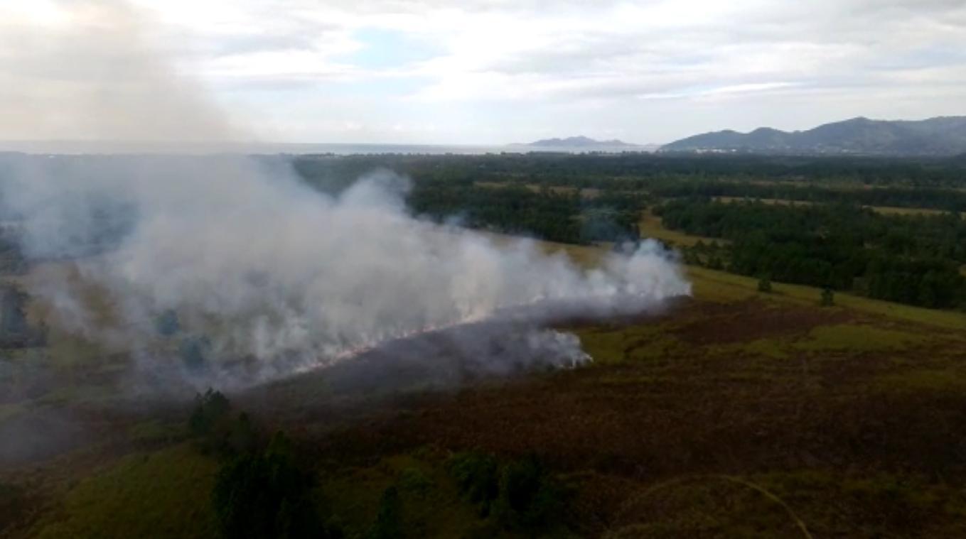 Incêndio atingiu novamente a Serra do Tabuleiro em Palhoça nesta terça - Arcanjo/Divulgação/ND