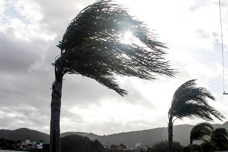 Litoral de Santa Catarina tem previsão de ventos fortes que podem chegar ate 70 km/h – Foto: Marco Santiago/Arquivo/ND