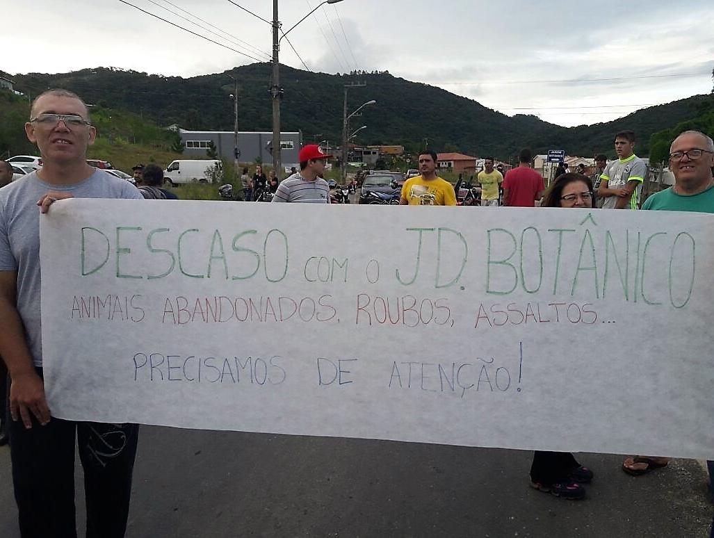 Moradores reclamam do descaso com o bairro e do abandono dos animais nas ruas - Divulgação/ND