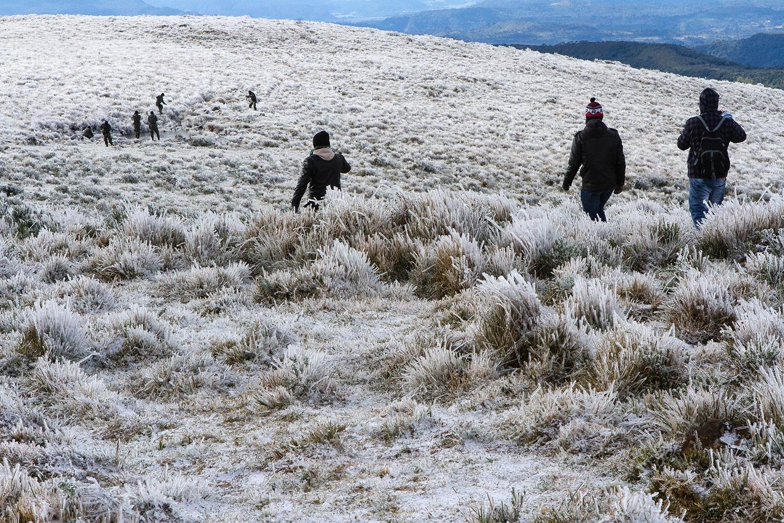 Em Urupema, a temperatura negativa proporcionou uma nova vista das paisagens - Flávio Tin/Arquivo/ND