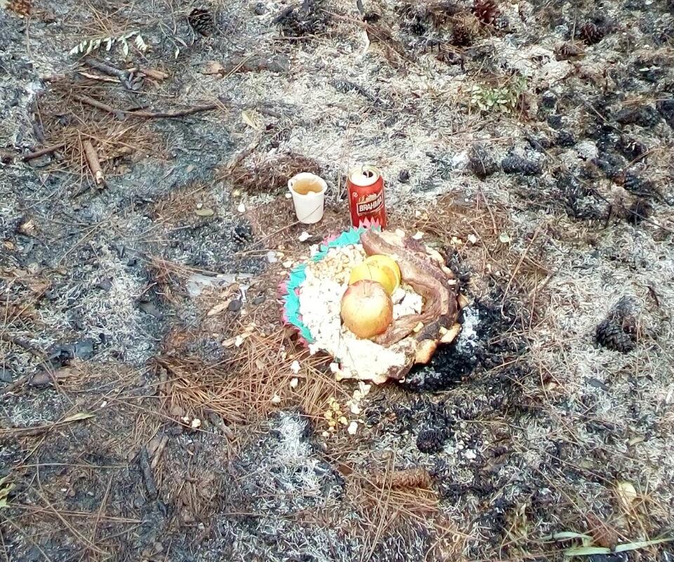 Segundo a Polícia Militar Ambiental, o fogo teria sido originado por uma oferenda - PMA/Divulgação/ND