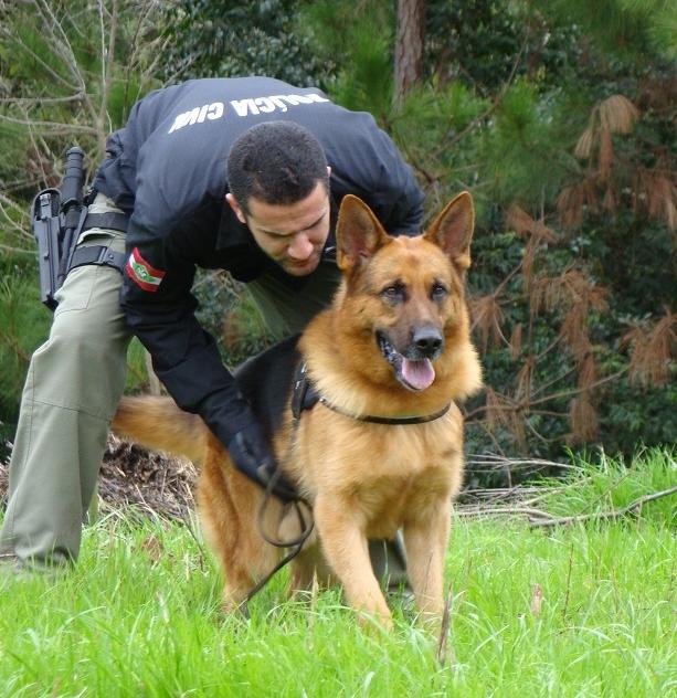 Thor estava aposentado dos serviços da Delegacia - Divulgação/Polícia Civil/ND