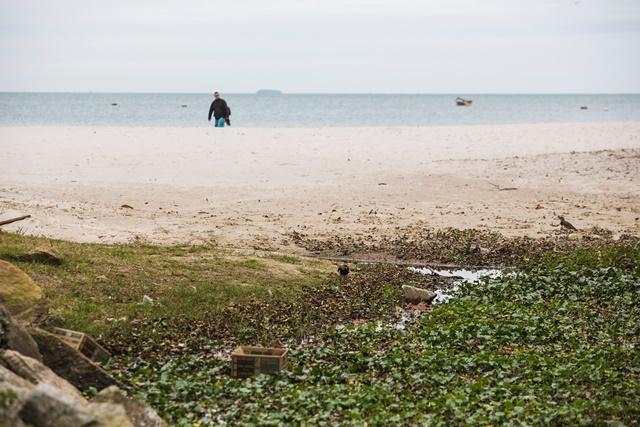 Praias do Norte da Ilha são as mais afetadas com o lançamento de esgoto. Assunto foi discutido em congresso na Capital  - Daniel Queiroz/ND