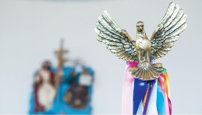 Festa do Divino: pomba representa o Espírito Santo  - Flávio Tin/Arquivo/ND