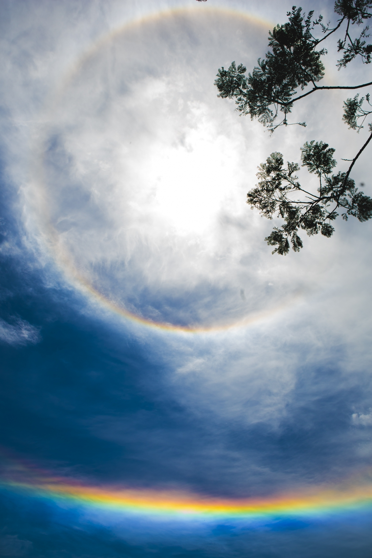 Halo solar chamou a atenção no céu de Florianópolis - Daniel Queiroz/ND