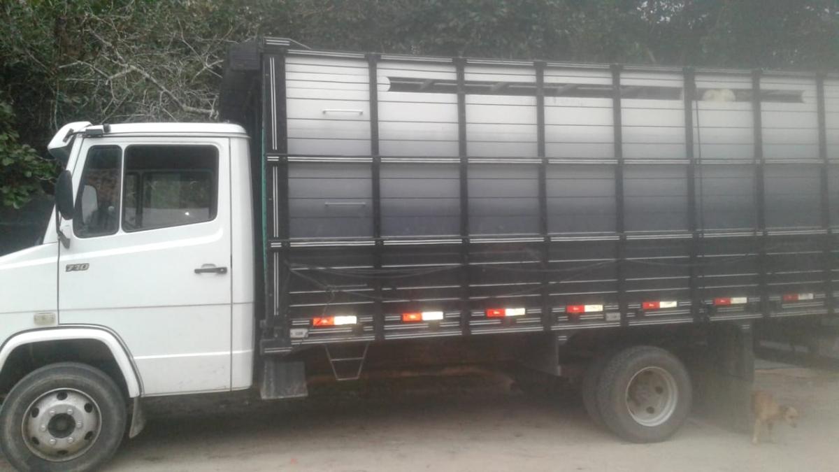Caminhão também foi apreendido pela polícia - PMA/Divulgação/ND