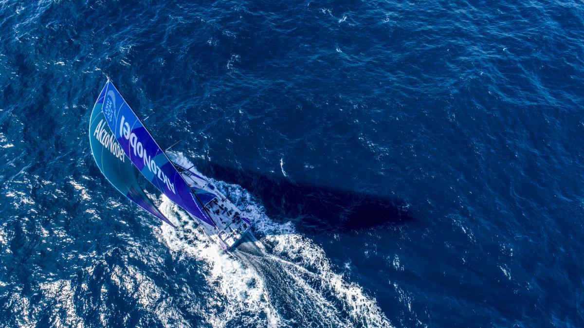 Barco da tripulante brasileira chega nesta sexta-feira a Itajaí - Akzo/James Blake/Volvo Ocean Race/Divulgação/ND