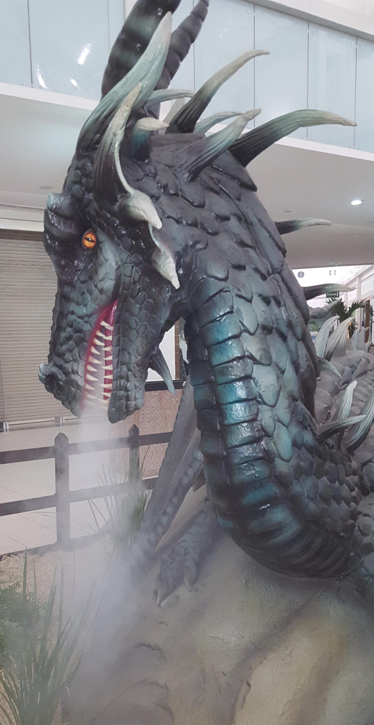 Dragão fogo - Divulgação