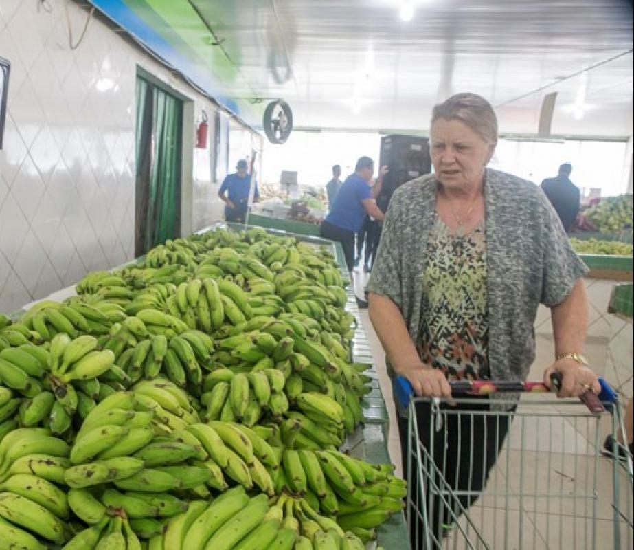Falta de alimentos em SC - Flávio Tin/ND