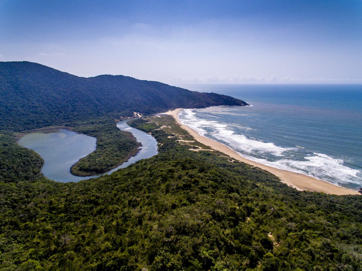 O Parque Natural Municipal da Lagoinha do Leste é um dos espaços preservados com conselho consultivo – Foto: Flávio Tin/ND