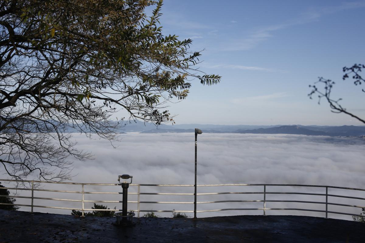 Queda da temperatura durante a madrugada na Capital foi um dos motivos para a formação do nevoeiro - Daniel Queiroz/ND