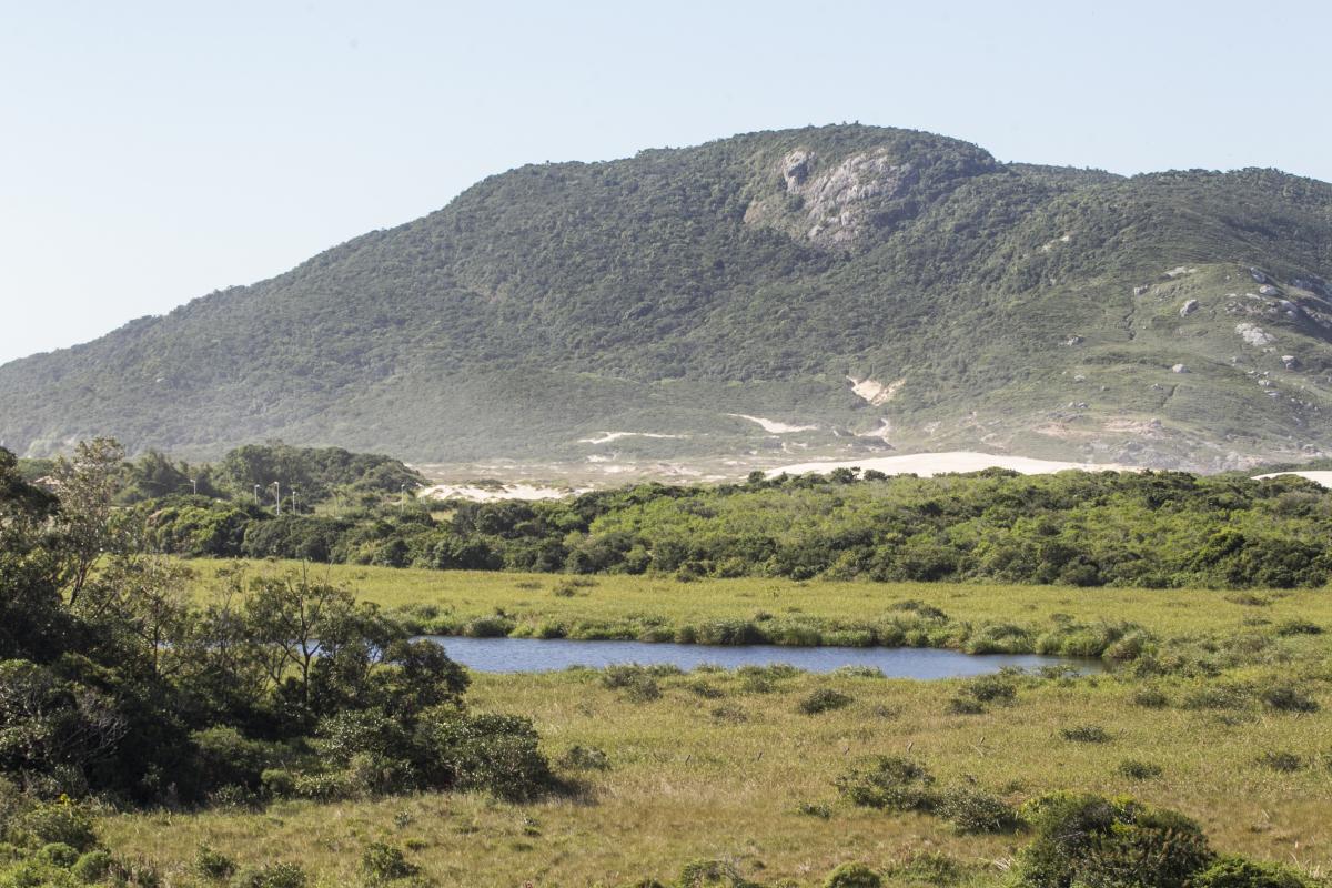 Parque da Lagoa do Jacaré, criado em 2016, é a unidade mais nova da Ilha - Marco Santiago/ND