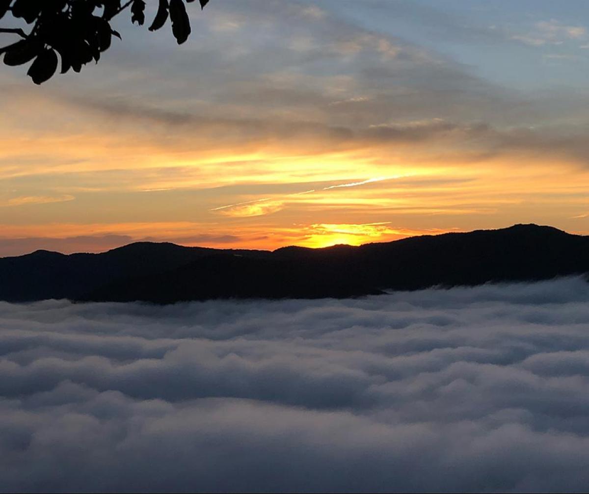 Apesar da neblina no começo da manhã, o sol volta a aparecer nesta quinta-feira - Viviane de Gênova/ND