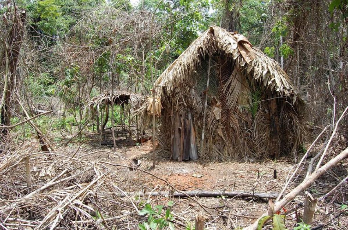 Índio da Terra Indígena Tanaru vive isolado na Amazônia - Acervo Funai/Divulgação/ND