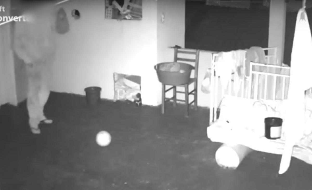 Homem espera as famílias saírem da casa para entrar e furtar as peças íntimas - RICTV Record/Reprodução/ND