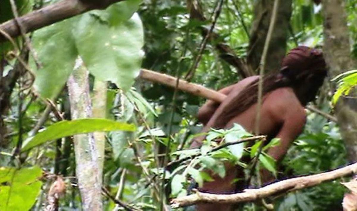 Índio daTerra IndígenaTanaru vive isolado há pelo menos22 anos - Acervo Funai/Divulgação/ND