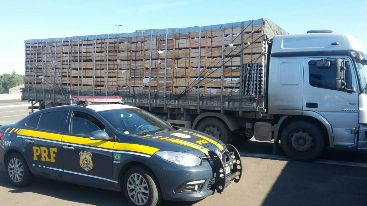 caminhão de tomate - PRF/Divulgação/ND