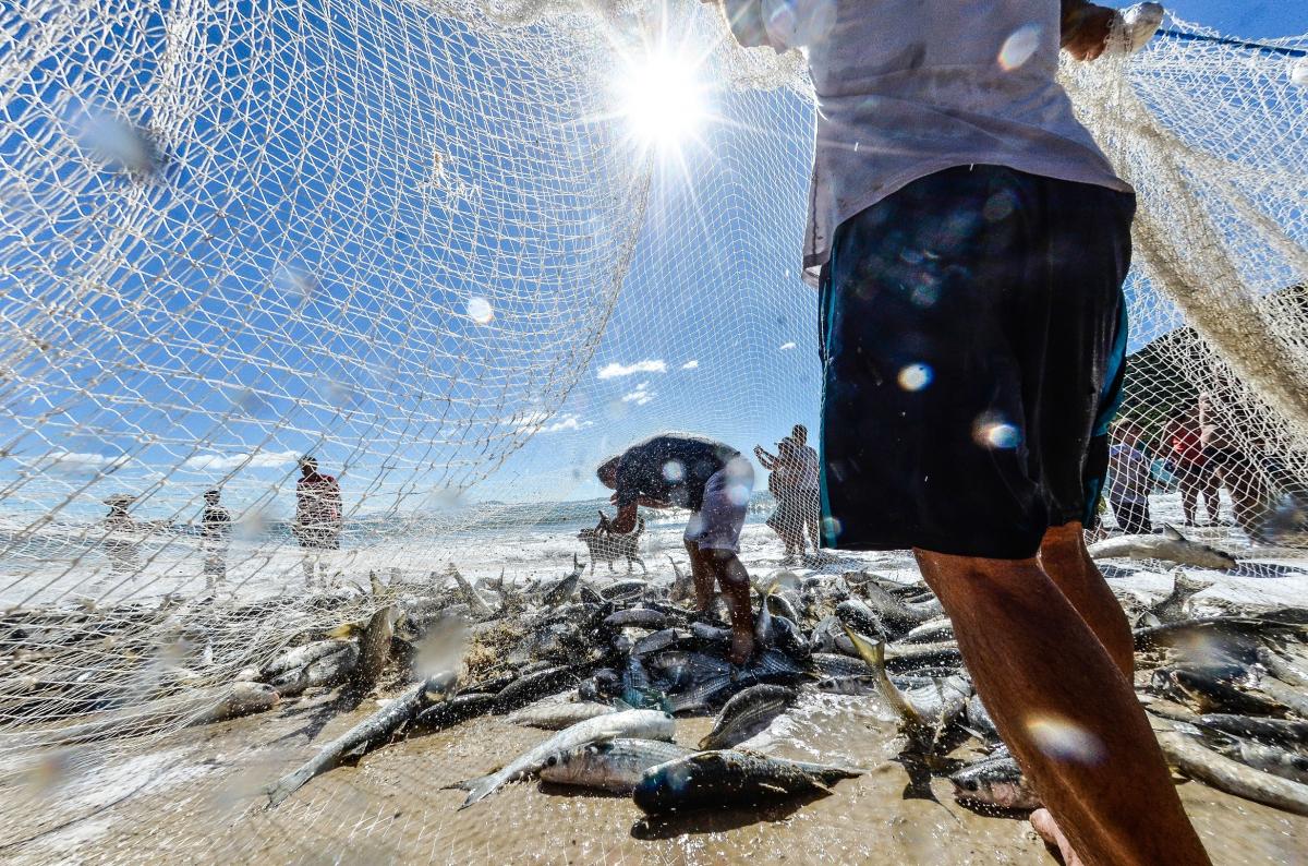 A tradição da pesca da tainha registrada na praia da Lagoinha do Norte - Joyce Reinert/ND