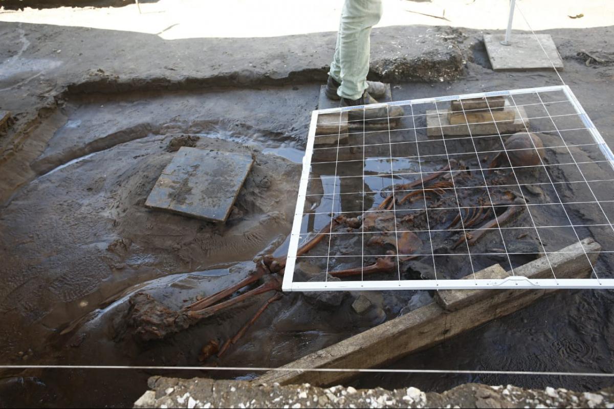 Ossada encontrada nesta quarta-feira nas obras do elevado do Rio Tavares - Daniel Queiroz/ND