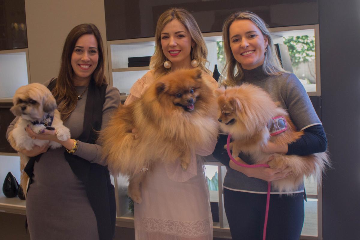 E-D_ Francine Faraco, Gabriela Faraco e Andreza Michelon - Anne Mello