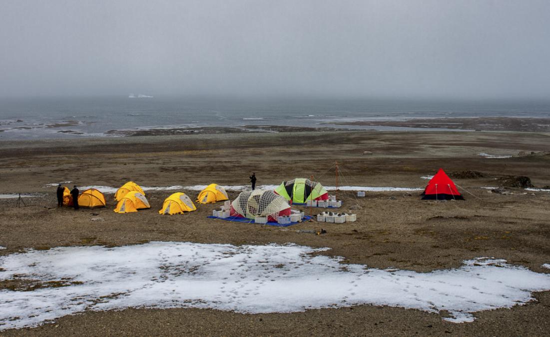 Barracas utilizadas no acampamento antártico: à esquerda dormitórios indivuduais, ao centro a cozinha e atrás o laboratório, à direita o banheiro (vermelha) - Eduardo Bastos/Divulgação/ND
