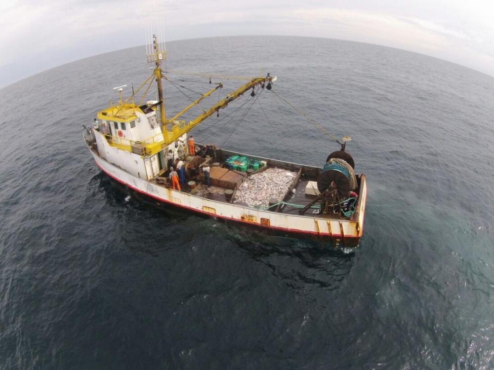 Atualmente, embarações podem pescar após três milhas náuticas da costa, o equivalente a 5,5 quilômetros - João José Francisco/Divulgação/ND