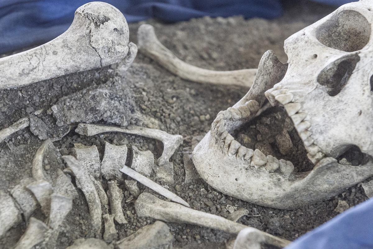 Homens do Sambaqui, como são chamados, iniciaram a jornada nestas terras há cerca de 8.500 anos - Marco Santiago/ND