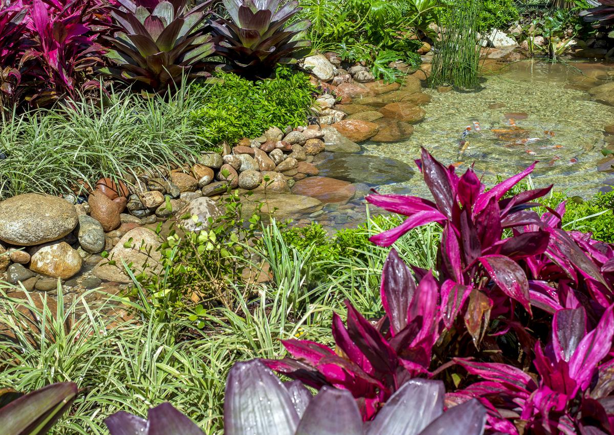O jardim do paisagista Cláudio Saladini recebe os visitantes - Lio Simas/Divulgação/ND