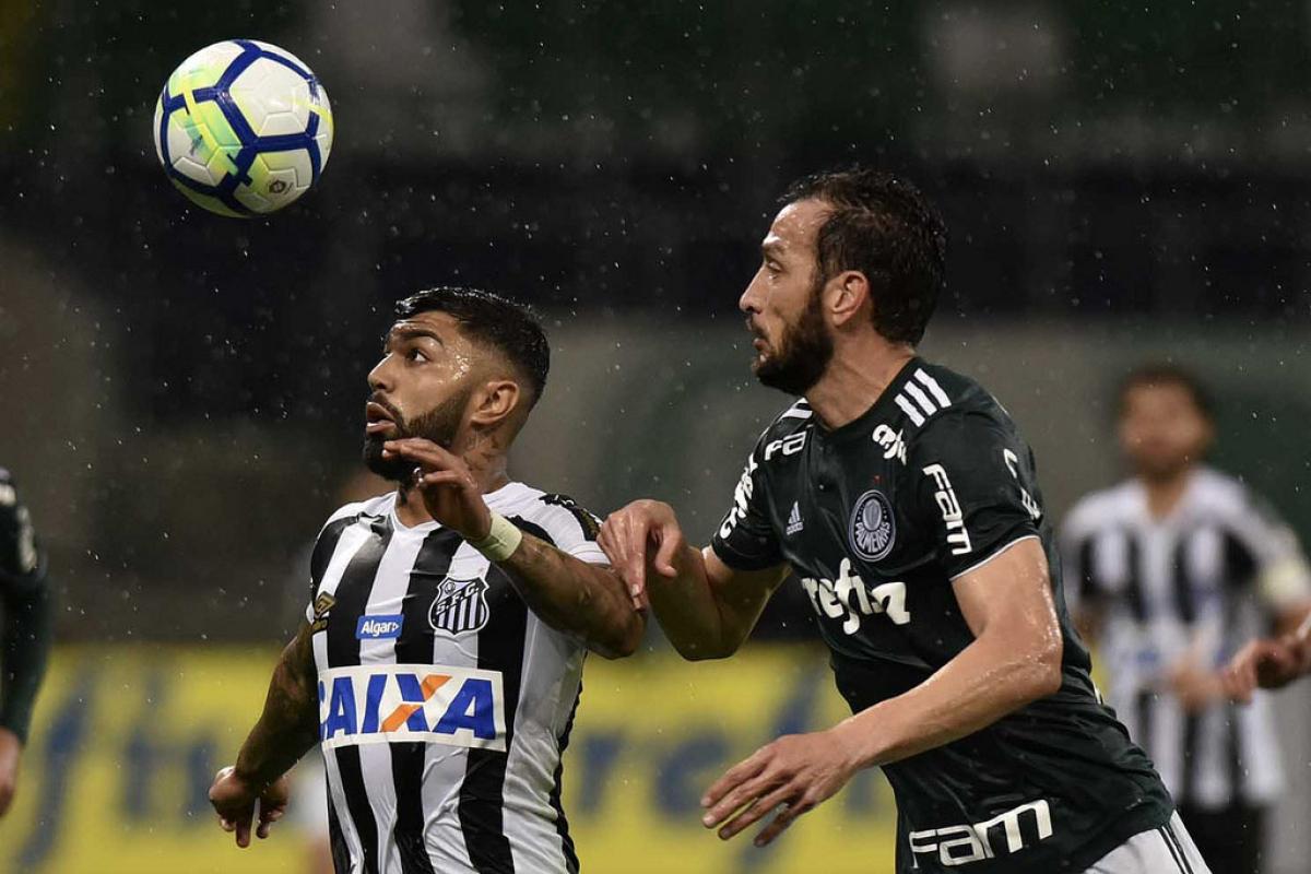 Edu Dracena e Gabigol disputam a bola no jogaço entre Palmeiras e Santos - Ivan Storti/Santos FC