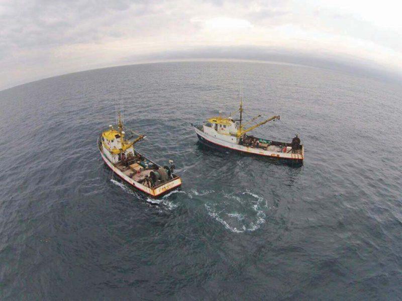 Embarcações autorizadas pela SAP já estão em alto mar em busca de 40 toneladas. Foto: João José Francisco/Divulgação/Arquivo/ND