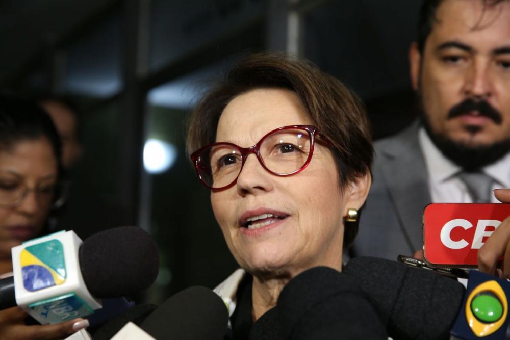 deputada Tereza Cristina (DEM-MS) - Antonio Cruz/ Agência Brasil