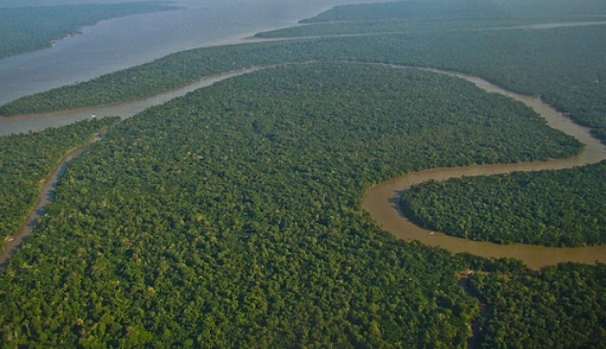 Amazônia - LuBasi/Creative Commons/Divulgação/ND
