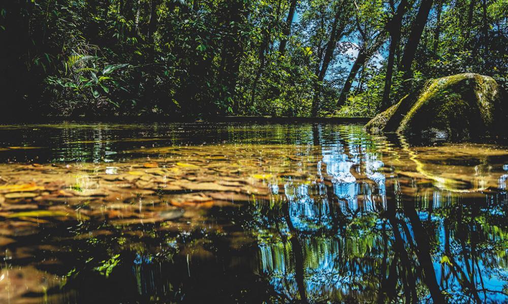 Para garantir a proteção de recursos naturais, a Portobello investe em atividades de educação ambiental, incluindo campanha do uso consciente de água - Ricardo Wolffenbüttel/Portobello