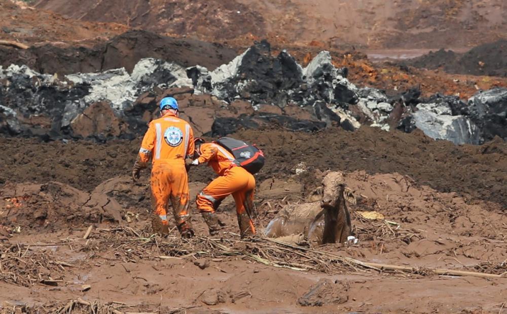 Voluntários tentam salvar uma vaca que está atolada na lama em Brumadinho - Wilton Junior/Estadão Conteúdo