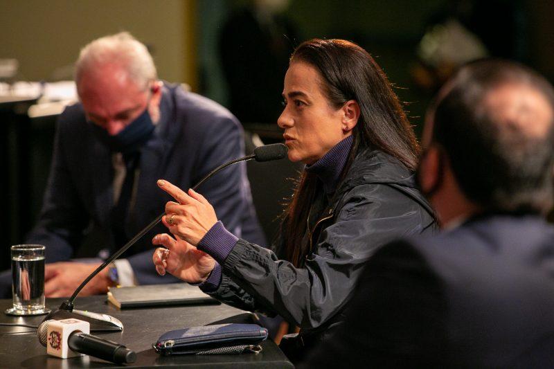 Servidora Marcia Pauli em depoimento na CPI dos Respiradores – Foto: Fábio Queiroz / Agência AL