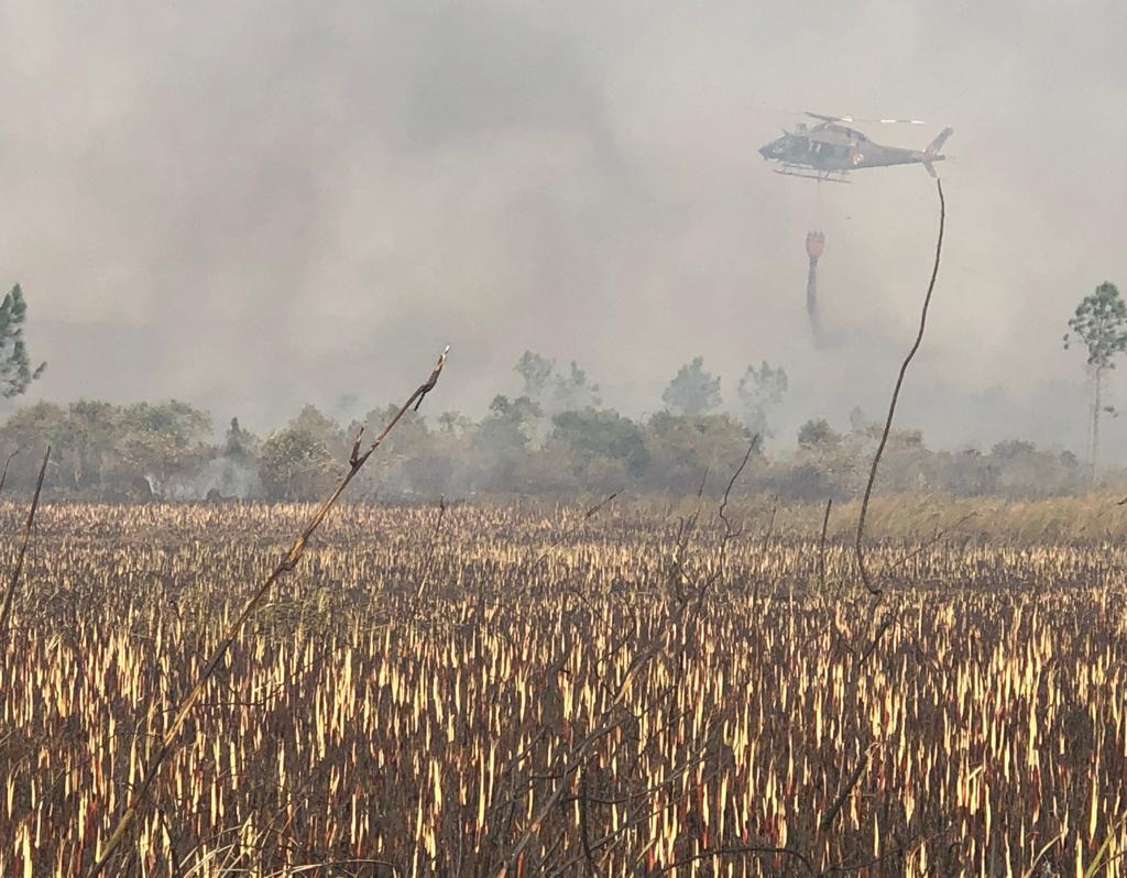 Em algumas regiões, de difícil acesso, só era possível combater o fogo com o auxílio de helicópteros - Flávio Tin/ND