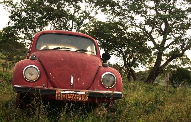 Nem mesmo o simpático Volkswagen Fusca consegue escapar dos abandonos - Foto: dougphotos via Visual Hunt / CC BY-NC-SA - Foto: dougphotos via Visual Hunt / CC BY-NC-SA/Garagem 360/ND