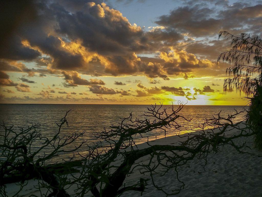 Grande Barreira de Coral, Austrália - Pixabay - Pixabay/Rota de Férias/ND