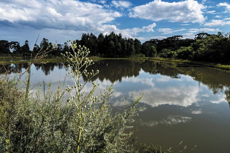 Lagoa resultante da recuperação ambiental da jazidas, em Canoinhas – Divulgação/Acervo Portobello