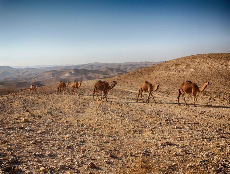 Vale Timna, Israel - Pixabay - Pixabay/Rota de Férias/ND