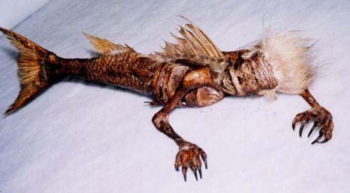 """Sereia no Taiti: Esse boato surgiu em 2006 e dizia que o esqueleto de uma sereia tinha sido encontrado no Taiti, um grupo de ilhas que pertence à Polinésia Francesa. Porém, a criatura mitológica não passava de uma criação de taxidermia. Ela era metade macaco e metade peixe. Essas """"sereias"""" existem desde 1842. Elas eram feitas nas ilhas Fiji, mas foram trazidas para os Estados Unidos para participar de uma espécie de freak show. - Crédito: Reprodução Internet/33Giga/ND"""