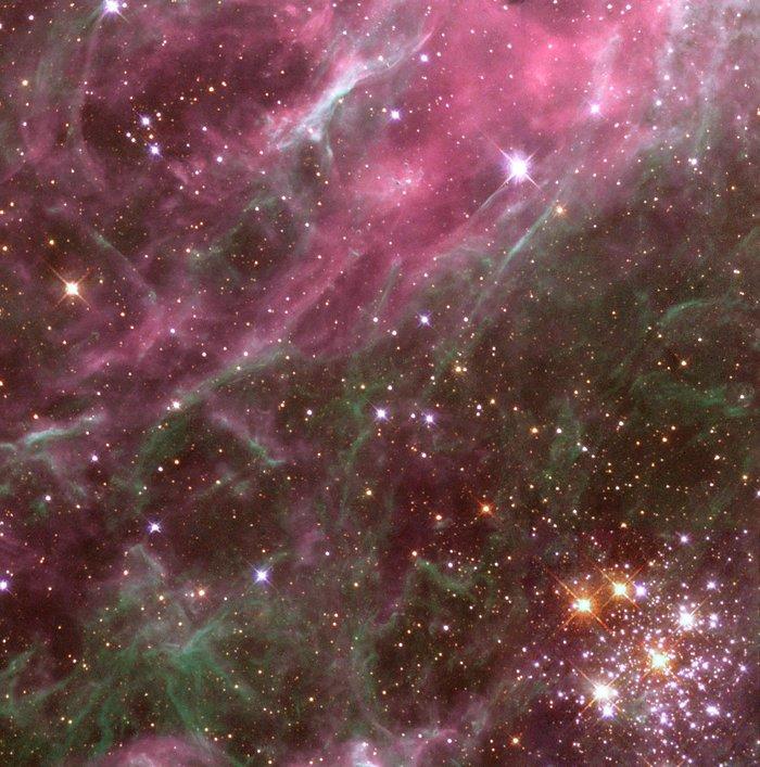 O aglomerado de estrelas Hodge 301 é antigo. Muitas de suas estrelas já explodiram como supernovas. Os filamentos no canto superior esquerdo foram comprimidos pelas explosões dessas estrelas. Em outra parte da foto, as estrelas estão nascendo. - Crédito: Hubble-Heritage-Team/33Giga/ND