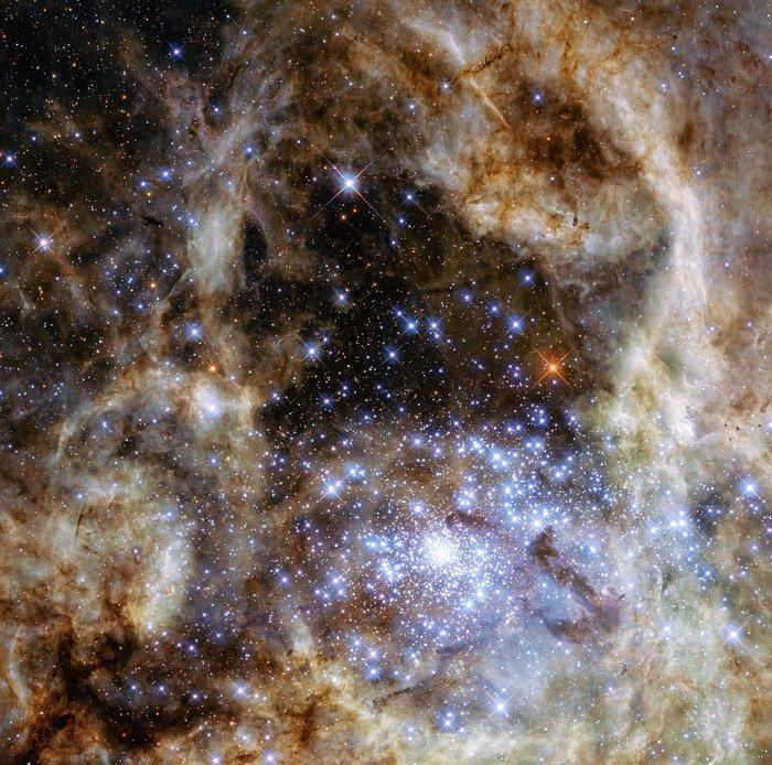 A imagem mostra a região central da Nebulosa da Tarântula na Grande Nuvem de Magalhães. O jovem e denso aglomerado estelar R136 pode ser visto no canto inferior direito da imagem. Este aglomerado contém centenas de jovens estrelas azuis, entre elas, a estrela mais massiva detectada no Universo até agora. - Crédito: NASA, ESA, P Crowther (University of Sheffield)/33Giga/ND